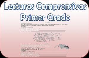 Lecturas comprensivas para primer grado de primaria | Educación Primaria