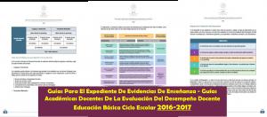 GuiasExpedienteDeEvidencias
