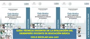 GuiasTecnicasED2016-2017