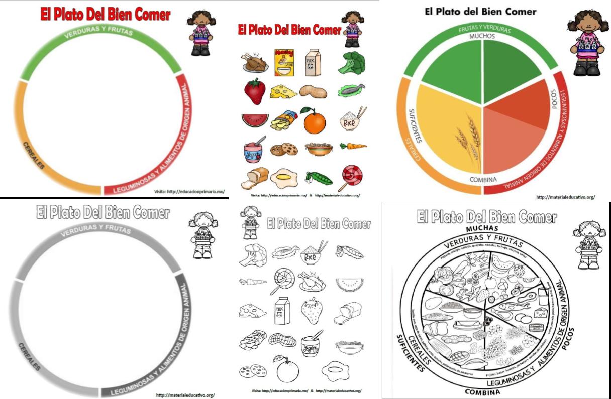 El plato del bien comer para armar, colorear y explicar ...
