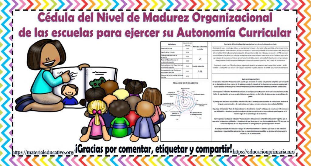 Autonomia curricular en preescolar
